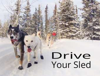 Drive your Sled